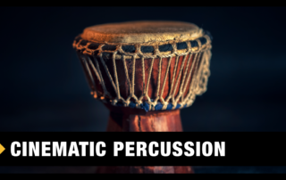 Best Cinematic Percussion VST