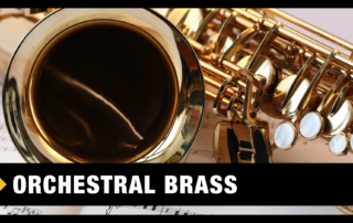 Best Orchestral Brass VST