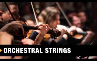 Best Orchestral Strings VST