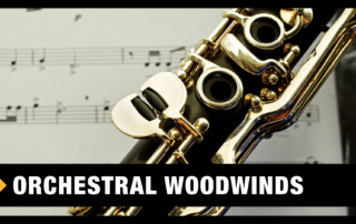Best Orchestral Woodwinds VST