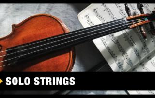 Best Solo Strings VST