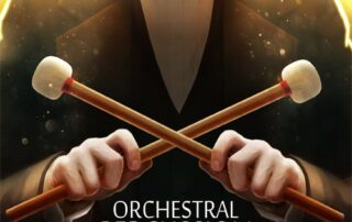 Orchestral Percussion X3M