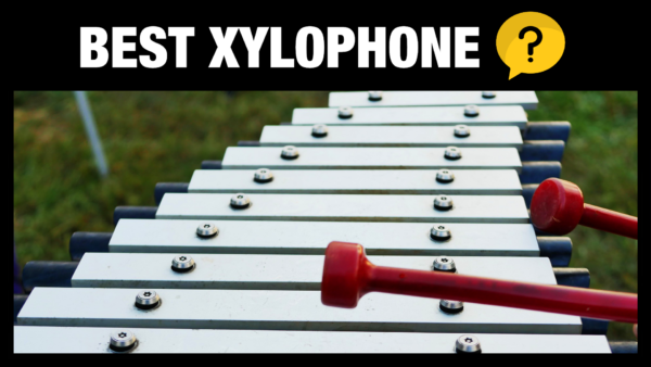 Best Xylophone VST Sample Libraries